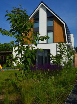 Moderne relax tuin