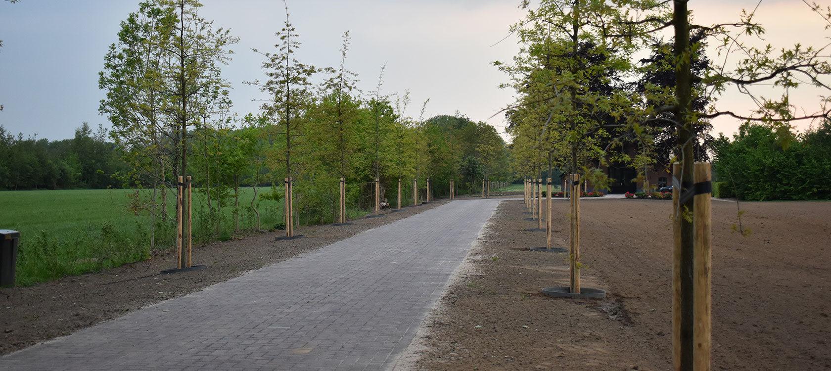 header-landelijke-tuin-zelhem.jpg
